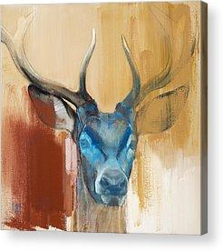 Red Deer Paintings Acrylic Prints