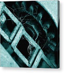 Creativity Acrylic Prints