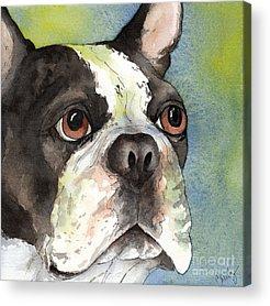 Watercolor Pet Portraits Acrylic Prints