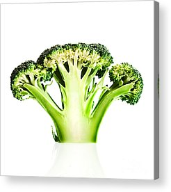 Broccoli Acrylic Prints