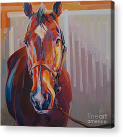 Race Horse Paintings Acrylic Prints