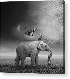 Surreal Digital Art Acrylic Prints