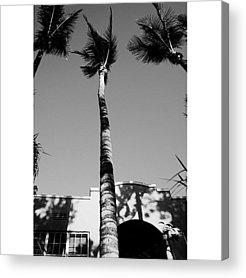 Architecturelovers Acrylic Prints