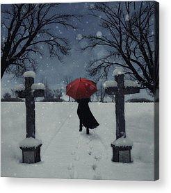 Bone Yard Acrylic Prints