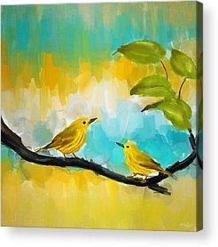 Warbler Acrylic Prints