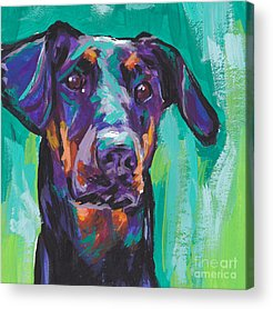Doberman Pinscher Acrylic Prints