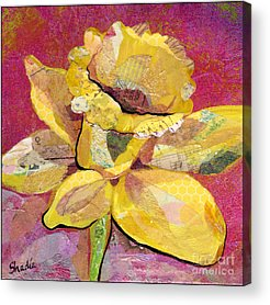 Daffodils Acrylic Prints