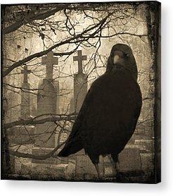 Ravens In Graveyard Acrylic Prints