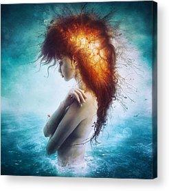 Artistic Nudes Acrylic Prints