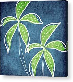 Sun And Tree Acrylic Prints