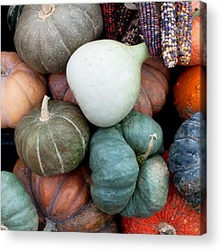 Harvest Acrylic Prints