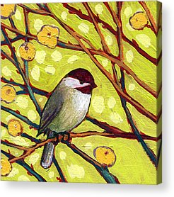 Chickadees Acrylic Prints