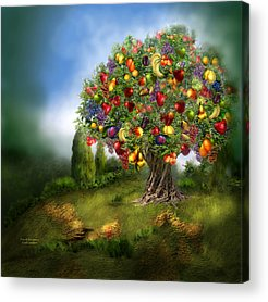 Fruit Tree Art Giclee Acrylic Prints