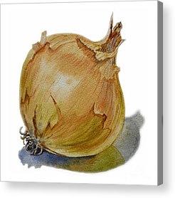 Onion Acrylic Prints