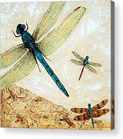 Flies Mixed Media Acrylic Prints
