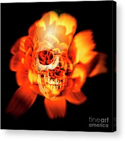 Red Skull Acrylic Prints