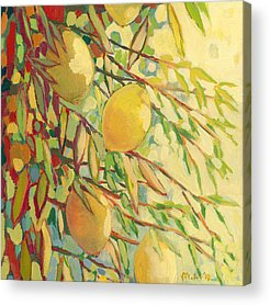 Fruit Acrylic Prints