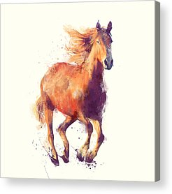 Wild Horse Mixed Media Acrylic Prints