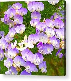 Plants Acrylic Prints