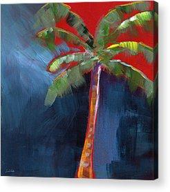 Palm Tree Acrylic Prints