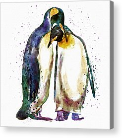 Penguin Acrylic Prints