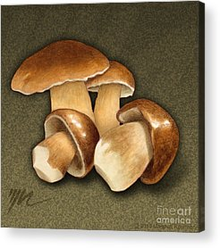 Earth Tone Drawings Acrylic Prints