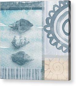 Seashell Acrylic Prints