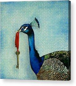 Art In Acrylic Acrylic Prints