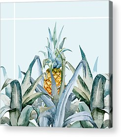 Palm Tree Acrylic Prints