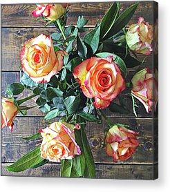Chrysanthemum Acrylic Prints