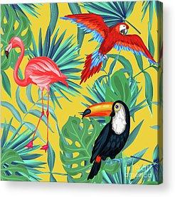Flamingo Flower Acrylic Prints