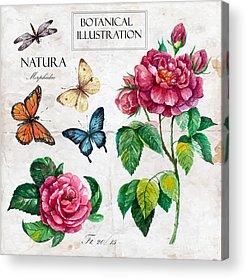 Botany Digital Art Acrylic Prints