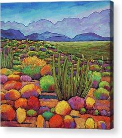 Vivid Colors Acrylic Prints