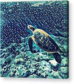 Sealife Acrylic Prints