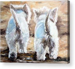 West Highland White Terrier Acrylic Prints