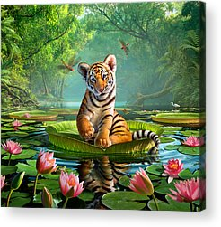 Pond Acrylic Prints
