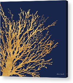 Coral Acrylic Prints