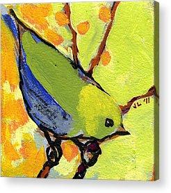Wildlife Acrylic Prints
