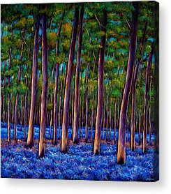 Forest Acrylic Prints