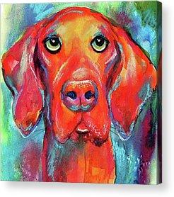 Dog Acrylic Prints