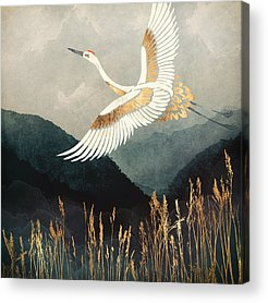 Crane Acrylic Prints