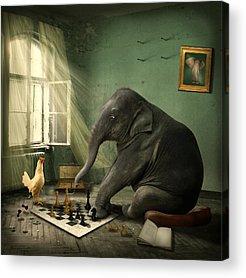 Chess Piece Acrylic Prints