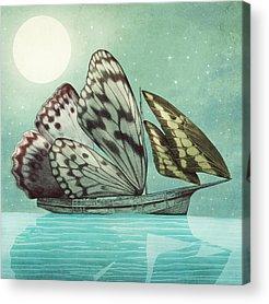 Sailing Acrylic Prints