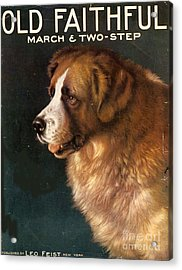 1910s Usa Old Faithful Dogs Acrylic Print by The Advertising Archives