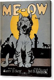 1920s Usa Cats Me-ow Meow Acrylic Print by The Advertising Archives