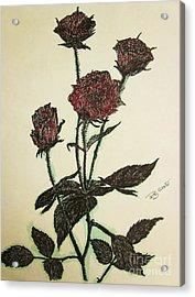 A Garden Rose Acrylic Print