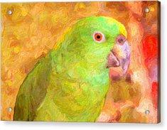 Amazon Parrot Acrylic Print by Gravityx9 Designs