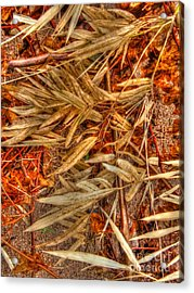 Bamboo Leaves Acrylic Print by Michelle Meenawong