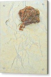 Beach Sand  2 Acrylic Print by Marcia Lee Jones
