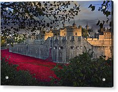 Blood Swept Lands And Seas Of Red. Acrylic Print